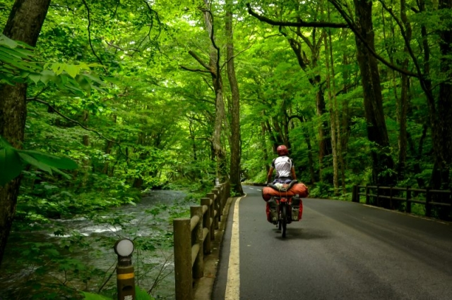 Bicycle touring in Towada Hachimantai National Park, Japan
