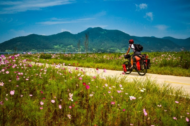 Biking on Korea's beautiful four rivers path.